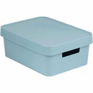 Curver Úložný box s víkem INFINITY 11 l, šedá