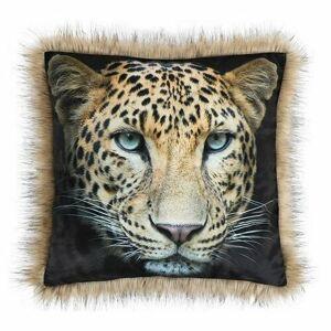 Polštářek SAFARI Leopard, 45 x 45 cm
