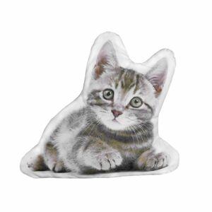 Forbyt Tvarovaný 3D polštářek Kočička, 35 x 25 cm